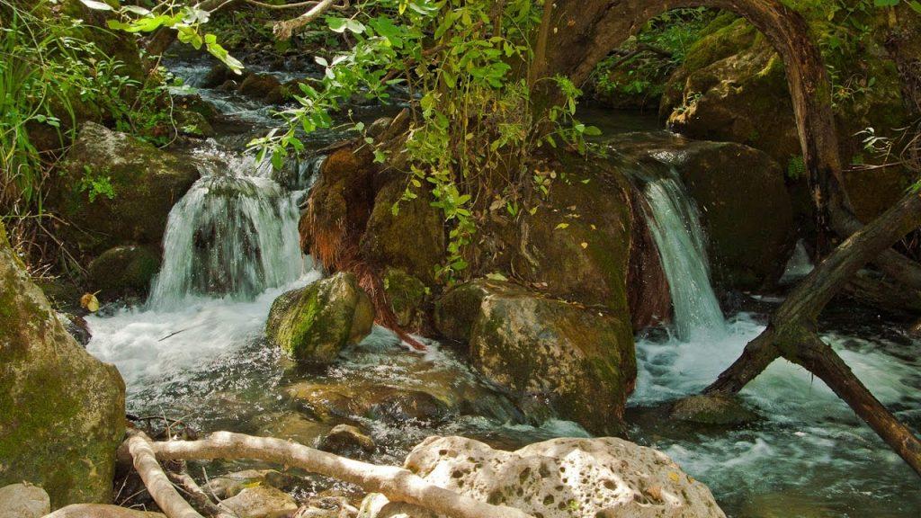Ruta Río Majaceite